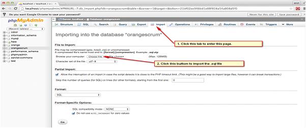 Database importing